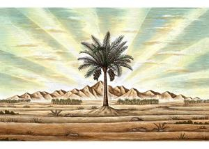 desert-palm-tree